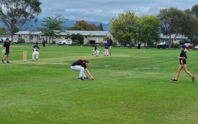 Penultimate Weekend of Summer Cricket